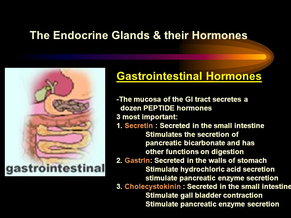 The Endocrine Glands & their Hormones
