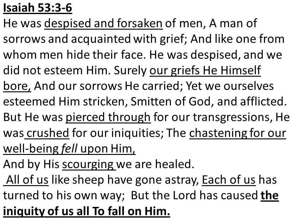 Isaiah 53:3-6