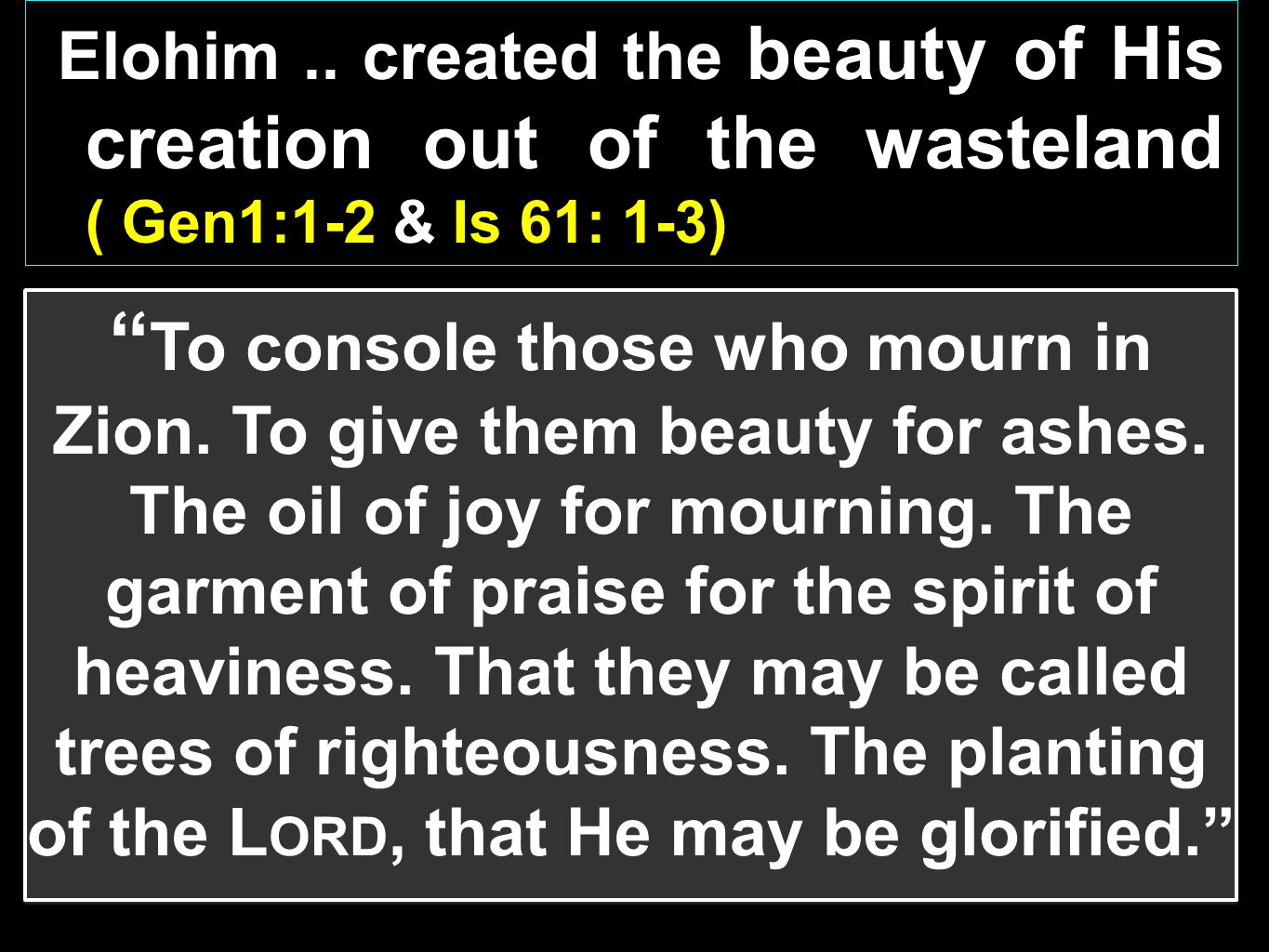 Elohim .. created the beauty of His creation out of the wasteland ( Gen1:1-2 & Is 61: 1-3)