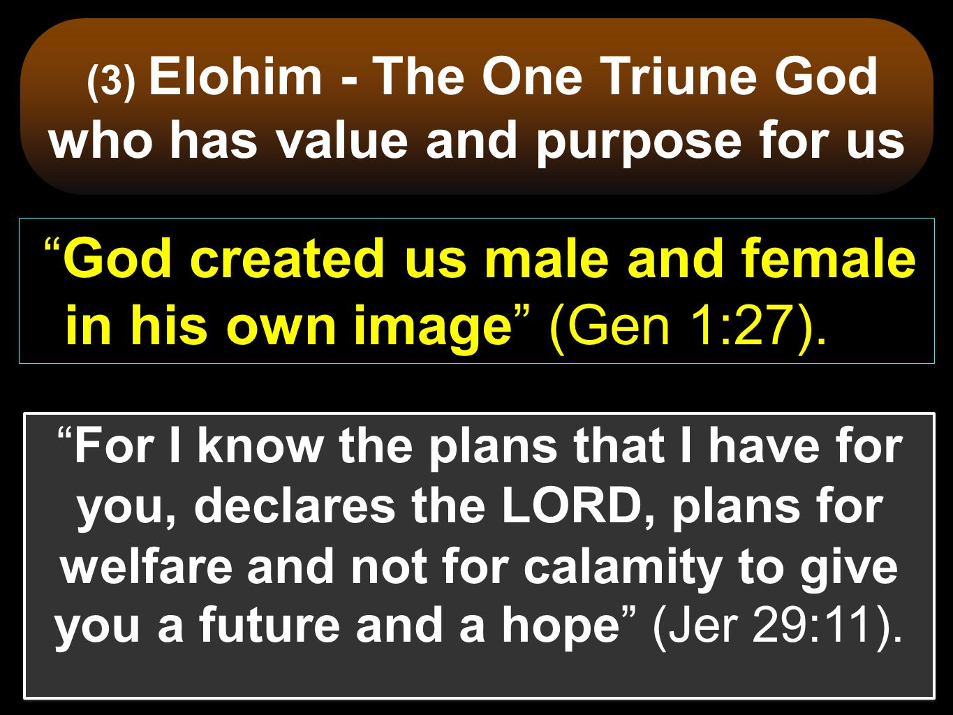 (3) Elohim - The One Triune God who has value and purpose for us
