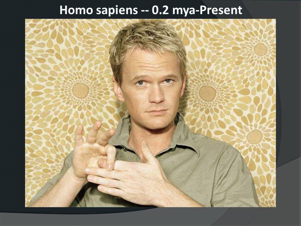 Homo sapiens -- 0.2 mya-Present