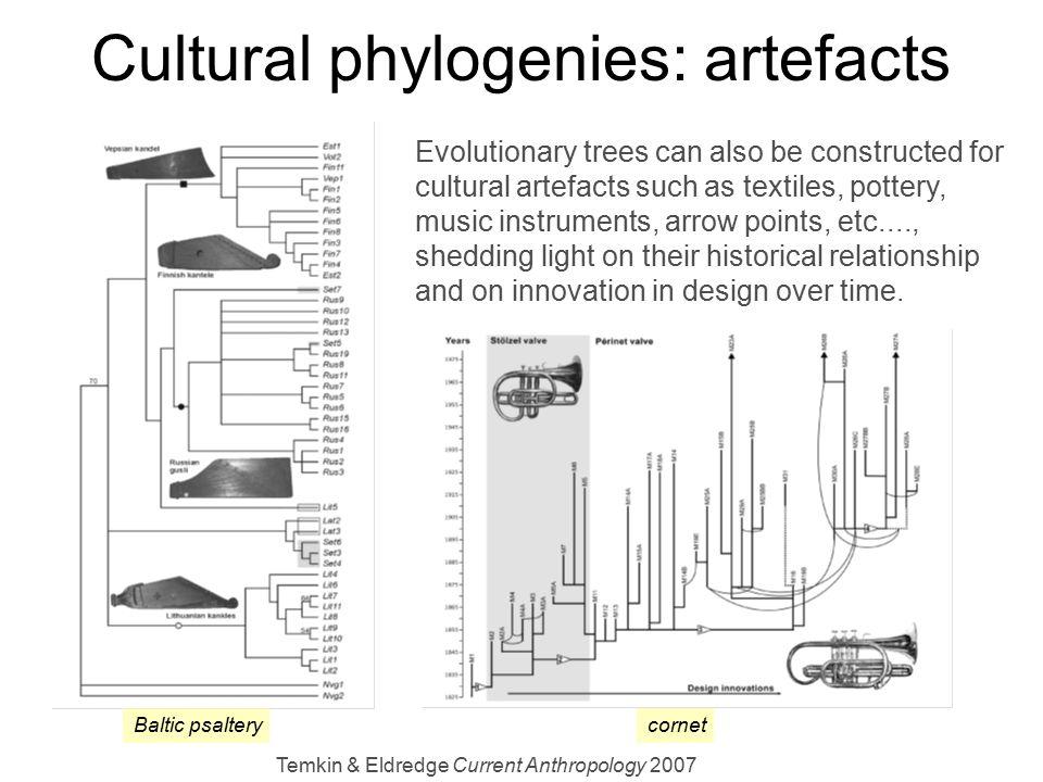 Cultural phylogenies: artefacts