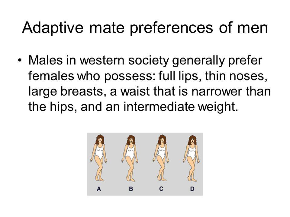 Adaptive mate preferences of men