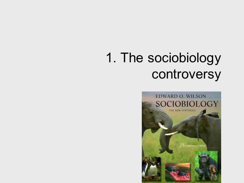 1. The sociobiology controversy