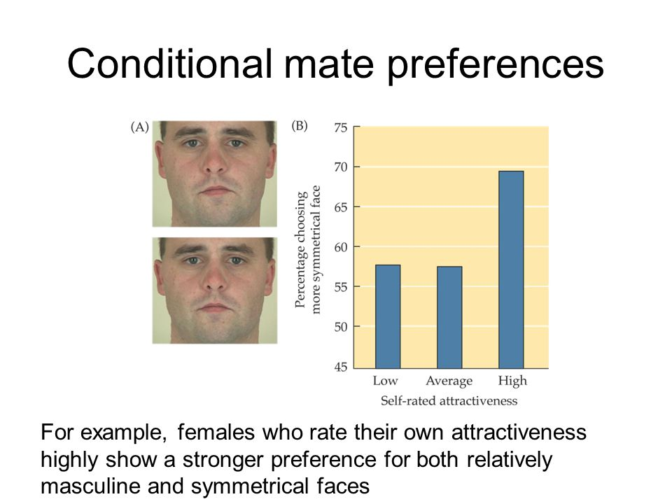 Conditional mate preferences