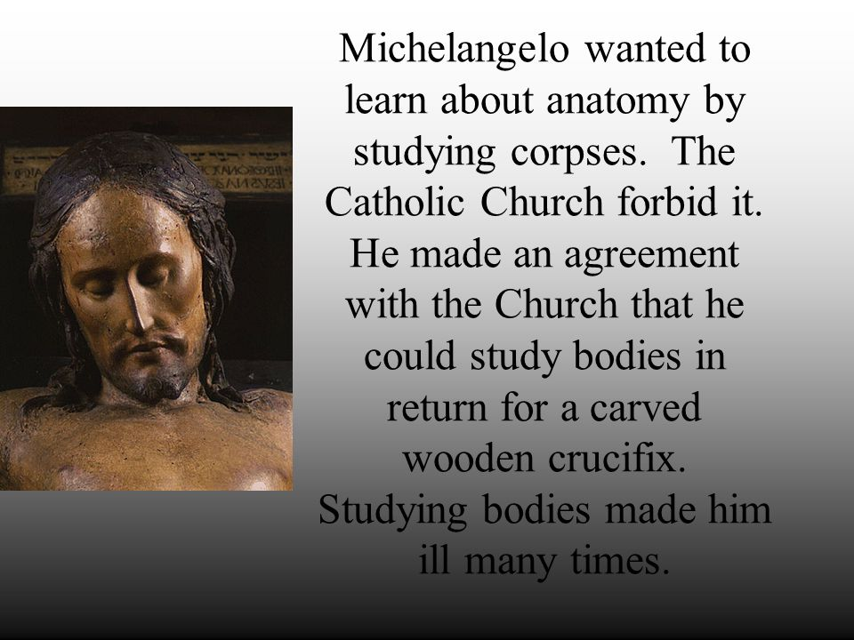 Michelangelo wanted to learn about anatomy by studying corpses