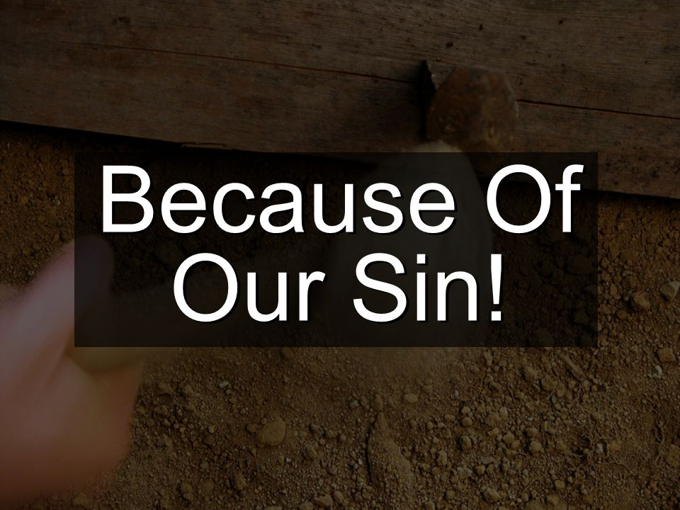 Because Of Our Sin!