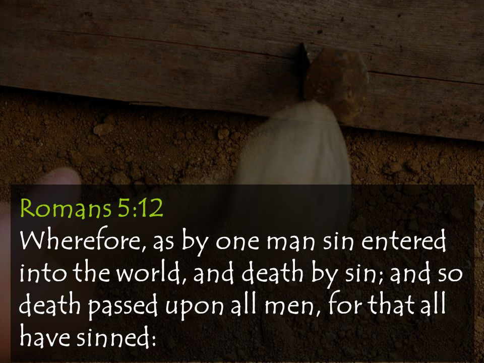 Romans 5:12 Wherefore, as by one man sin entered into the world, and death by sin; and so death passed upon all men, for that all have sinned:
