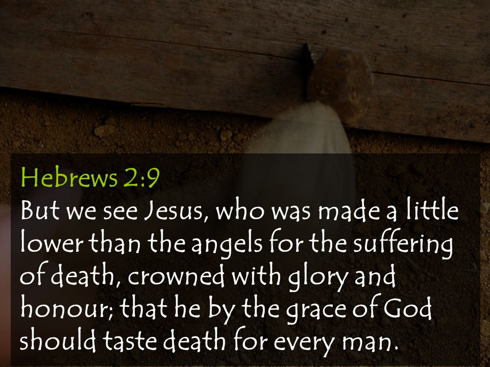 Hebrews 2:9 But we see Jesus, who was made a little lower than the angels for the suffering of death, crowned with glory and honour; that he by the grace of God should taste death for every man.