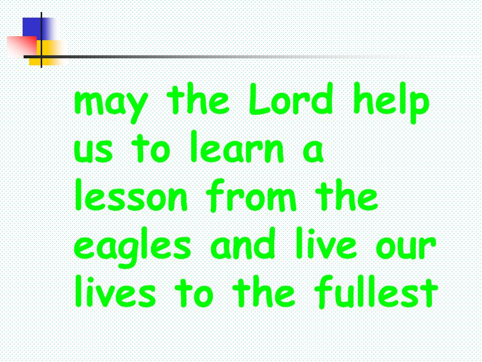 may the Lord help us to learn a lesson from the eagles and live our lives to the fullest