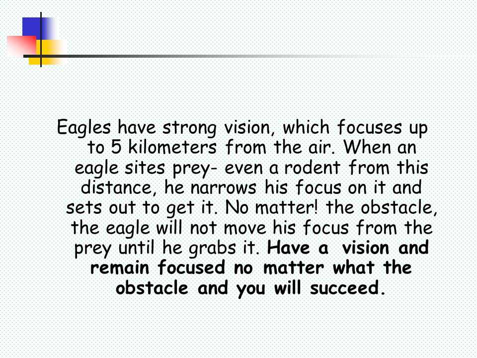 Eagles have strong vision, which focuses up to 5 kilometers from the air. When an eagle sites prey- even a rodent from this distance, he narrows his focus on it and sets out to get it. No matter! the obstacle, the eagle will not move his focus from the prey until he grabs it. Have a vision and remain focused no matter what the obstacle and you will succeed.