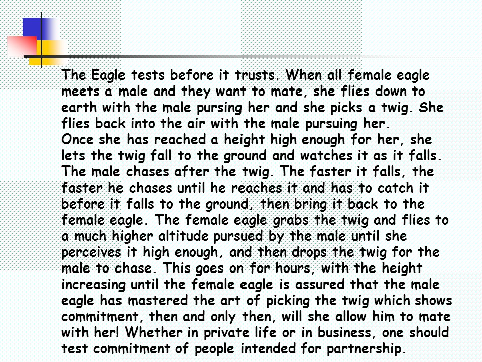The Eagle tests before it trusts