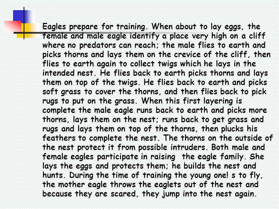 Eagles prepare for training