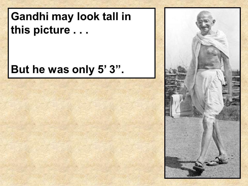 Gandhi may look tall in this picture . . .