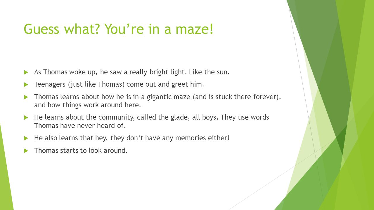 Guess what You're in a maze!