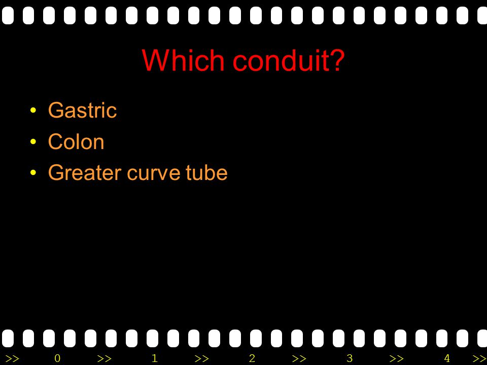 Which conduit Gastric Colon Greater curve tube
