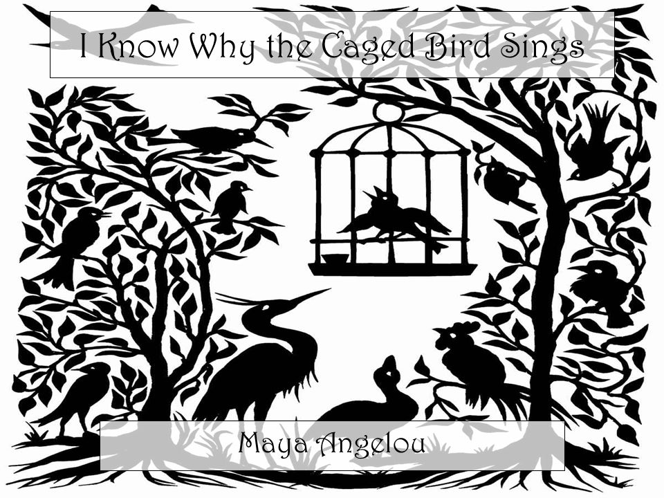 plot of i know why the caged bird sings