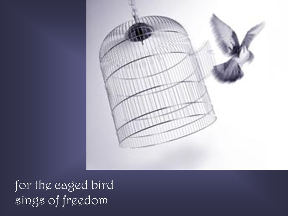 for the caged bird sings of freedom