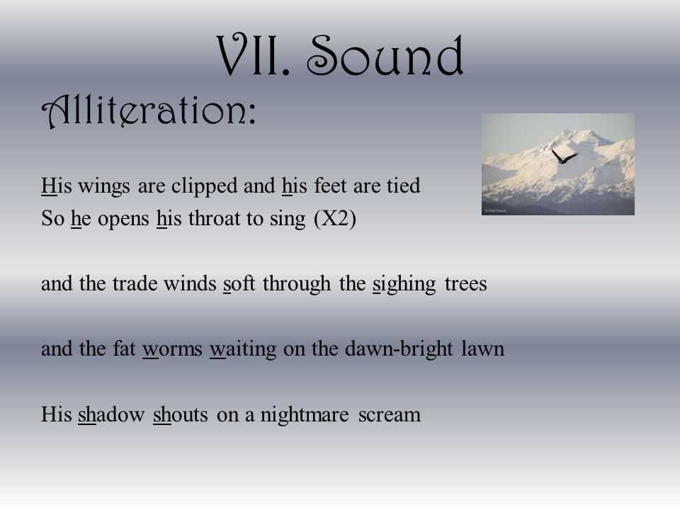 VII. Sound Alliteration: His wings are clipped and his feet are tied
