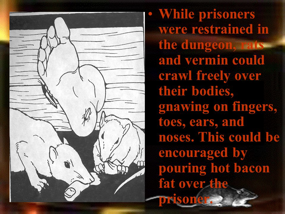 While prisoners were restrained in the dungeon, rats and vermin could crawl freely over their bodies, gnawing on fingers, toes, ears, and noses.