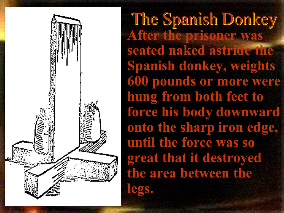 The Spanish Donkey