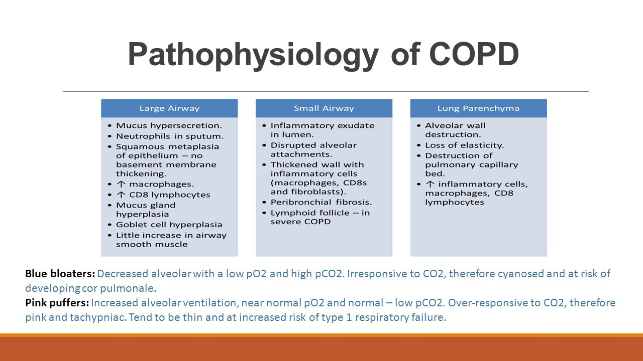 the pathophysiology of a disease copd In patients with chronic obstructive pulmonary disease (copd), pro-inflammatory and pro-destructive pathways are activated, at times independent of smoke exposure, and other anti-inflammatory, anti-oxidant, or repair pathways are down-regulated, all resulting in lung destruction.