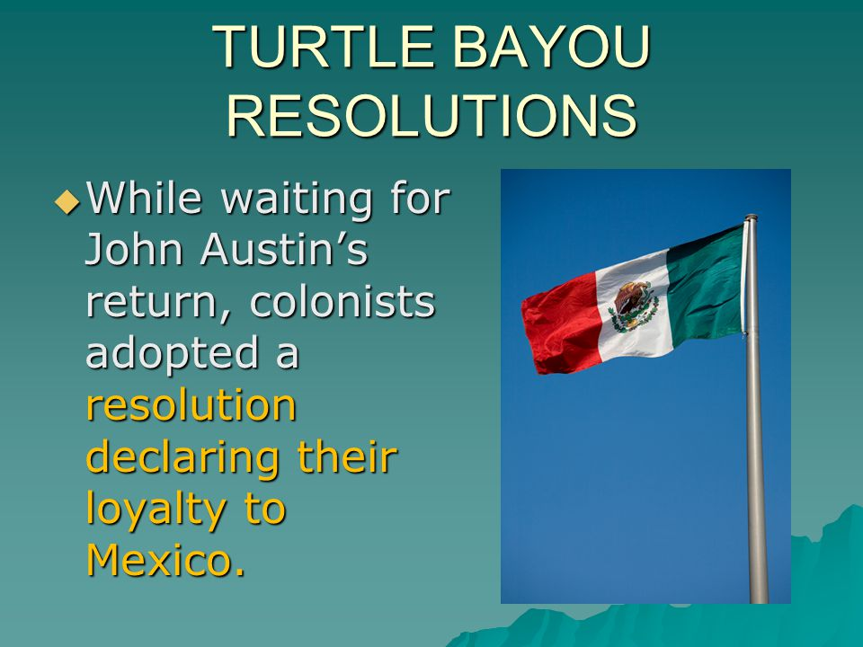 TURTLE BAYOU RESOLUTIONS
