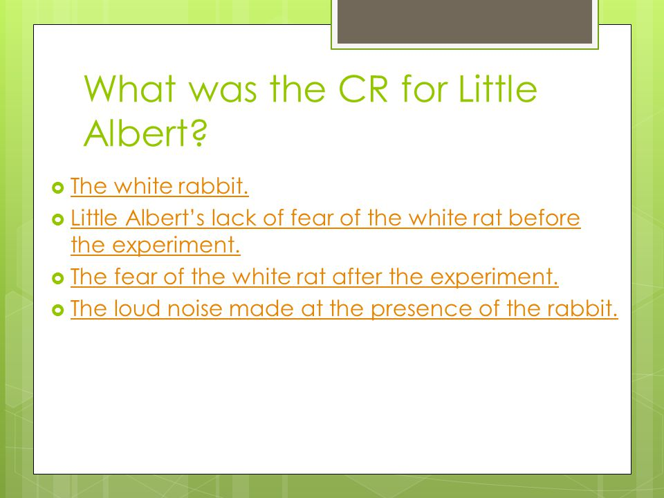 What was the CR for Little Albert