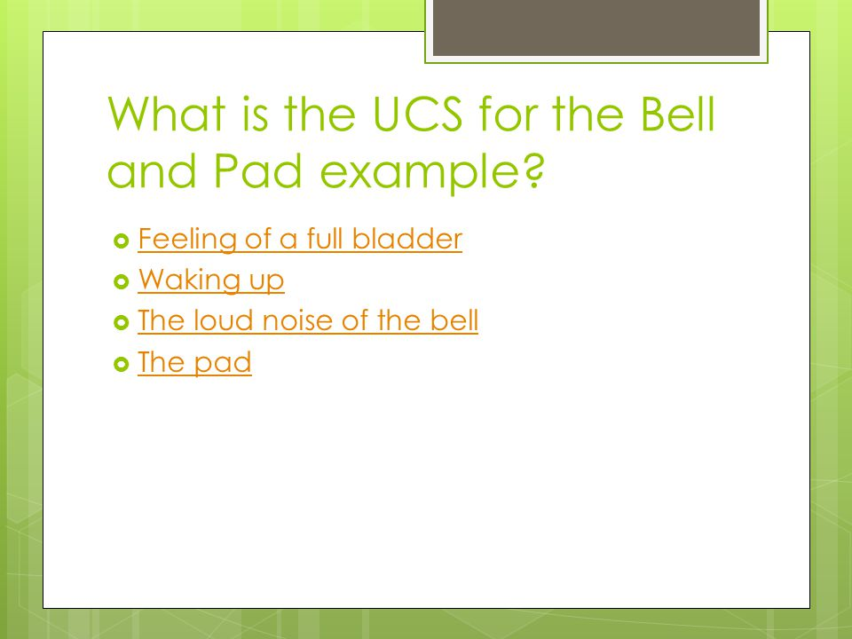 What is the UCS for the Bell and Pad example
