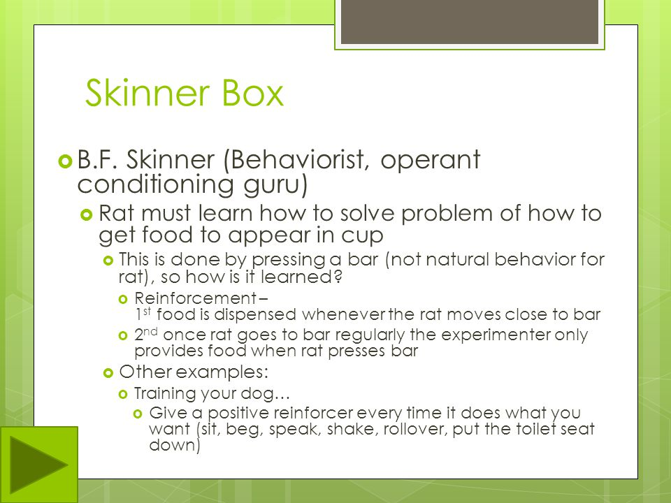 Skinner Box B.F. Skinner (Behaviorist, operant conditioning guru)