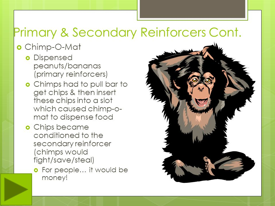 Primary & Secondary Reinforcers Cont.