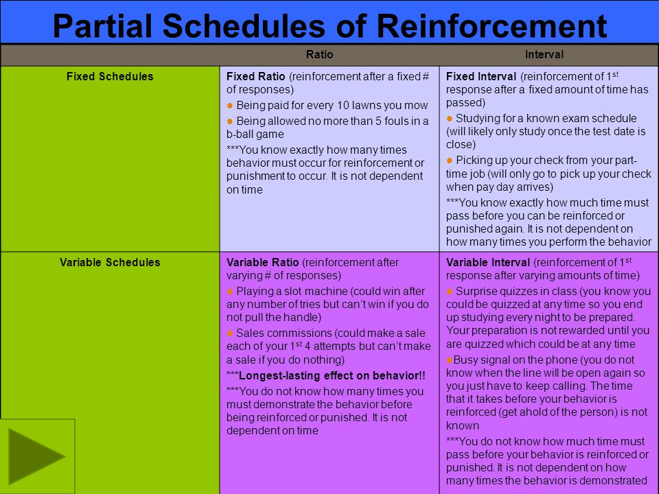 Partial Schedules of Reinforcement