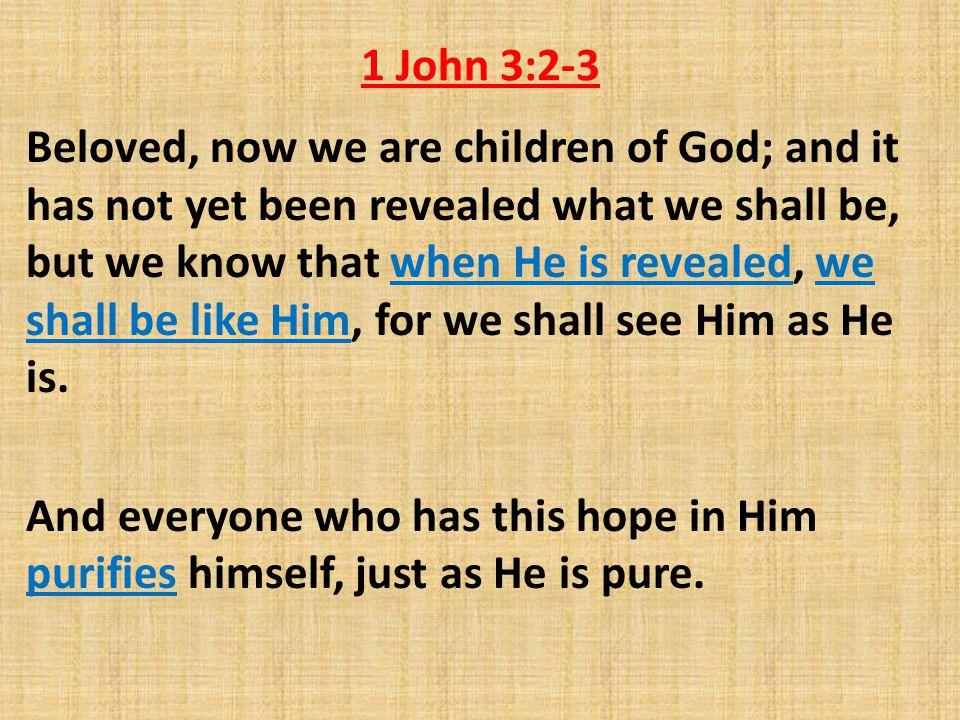 1 John 3:2-3