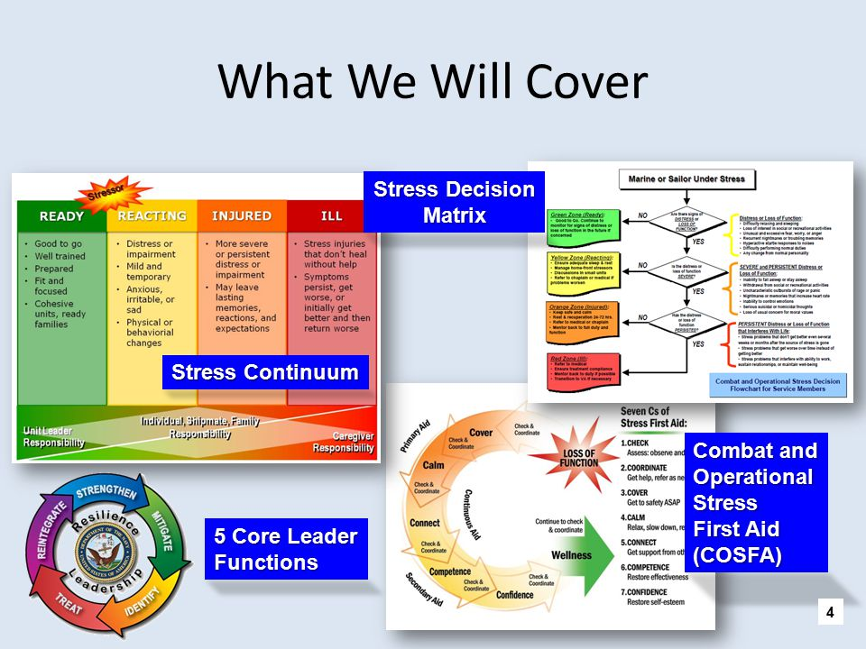 What We Will Cover Stress Decision Matrix Stress Continuum Combat and