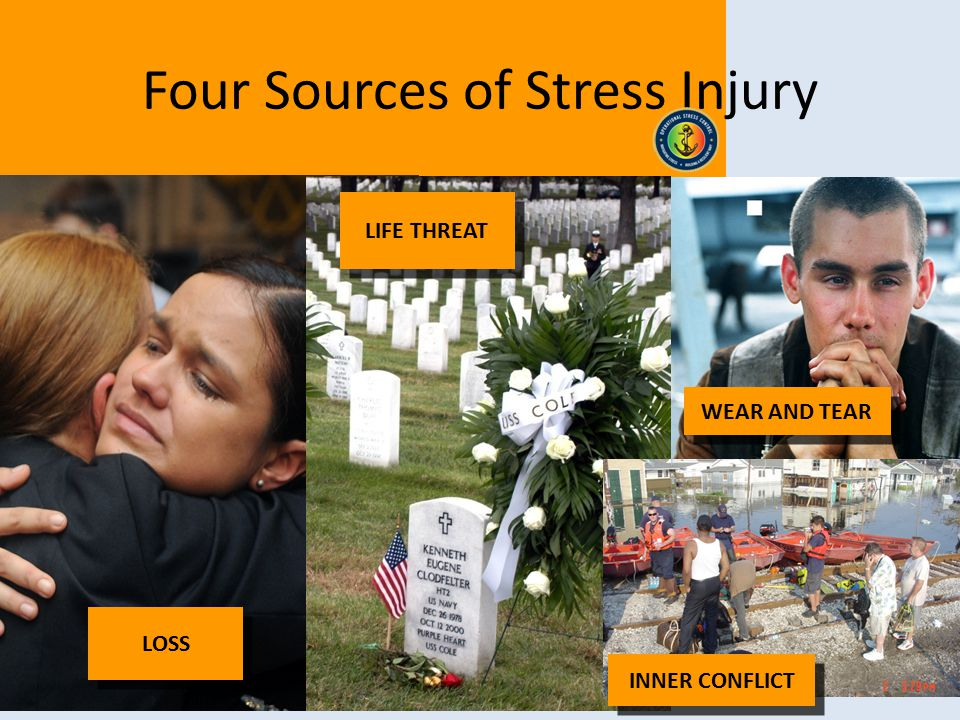 Four Sources of Stress Injury