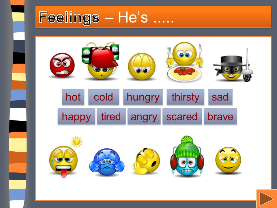 Feelings – He's ..... hot cold hungry thirsty sad happy tired angry