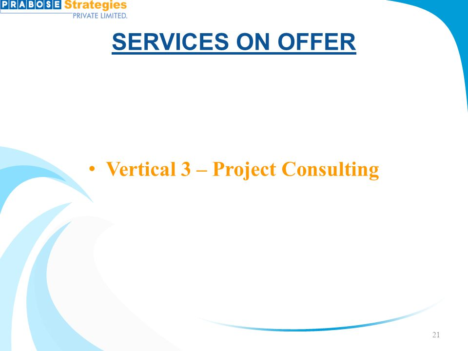 Vertical 3 – Project Consulting