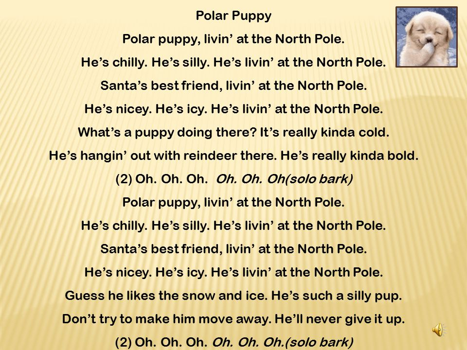 Polar puppy, livin' at the North Pole.