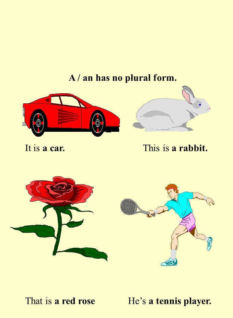A / an has no plural form. It is a car. This is a rabbit.