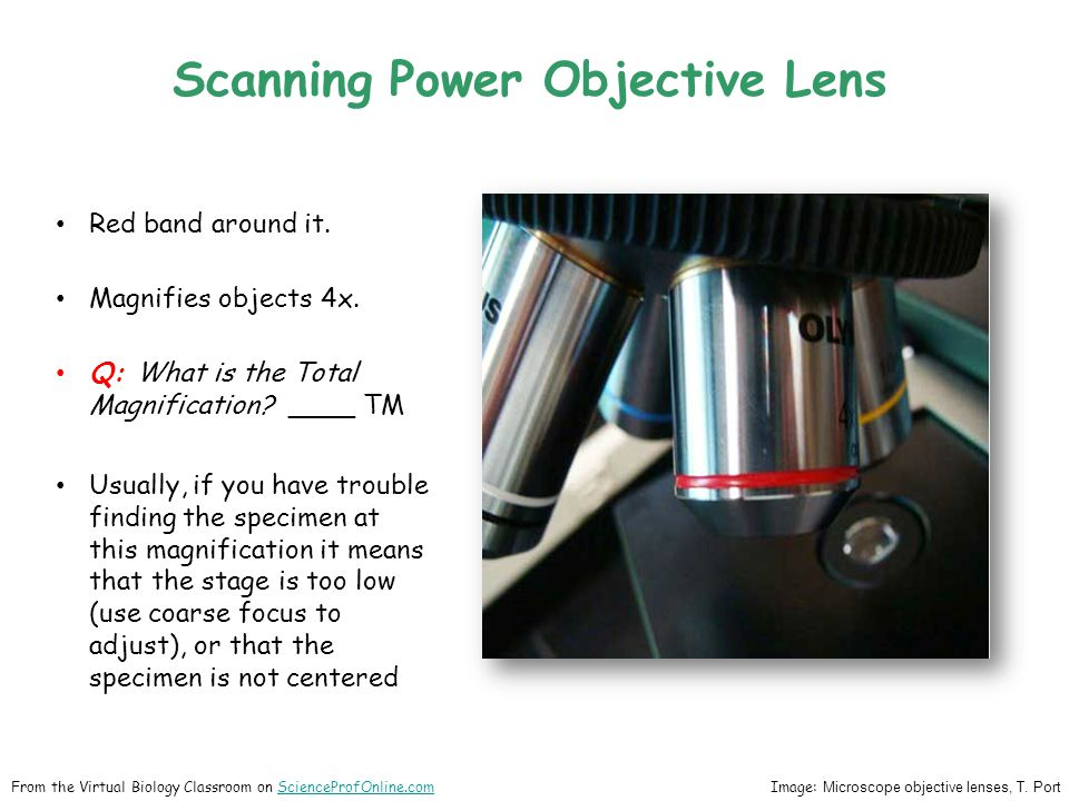 Scanning Power Objective Lens