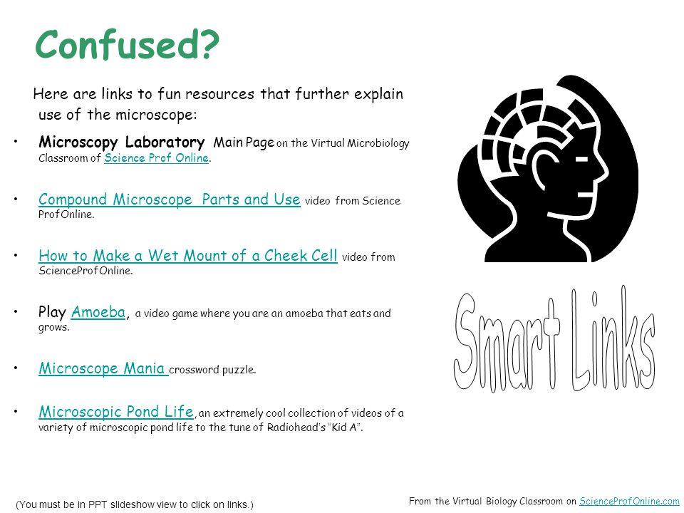 Confused Here are links to fun resources that further explain use of the microscope: