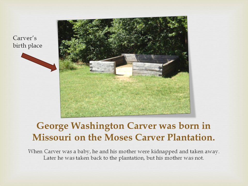 Carver's birth place George Washington Carver was born in Missouri on the Moses Carver Plantation.