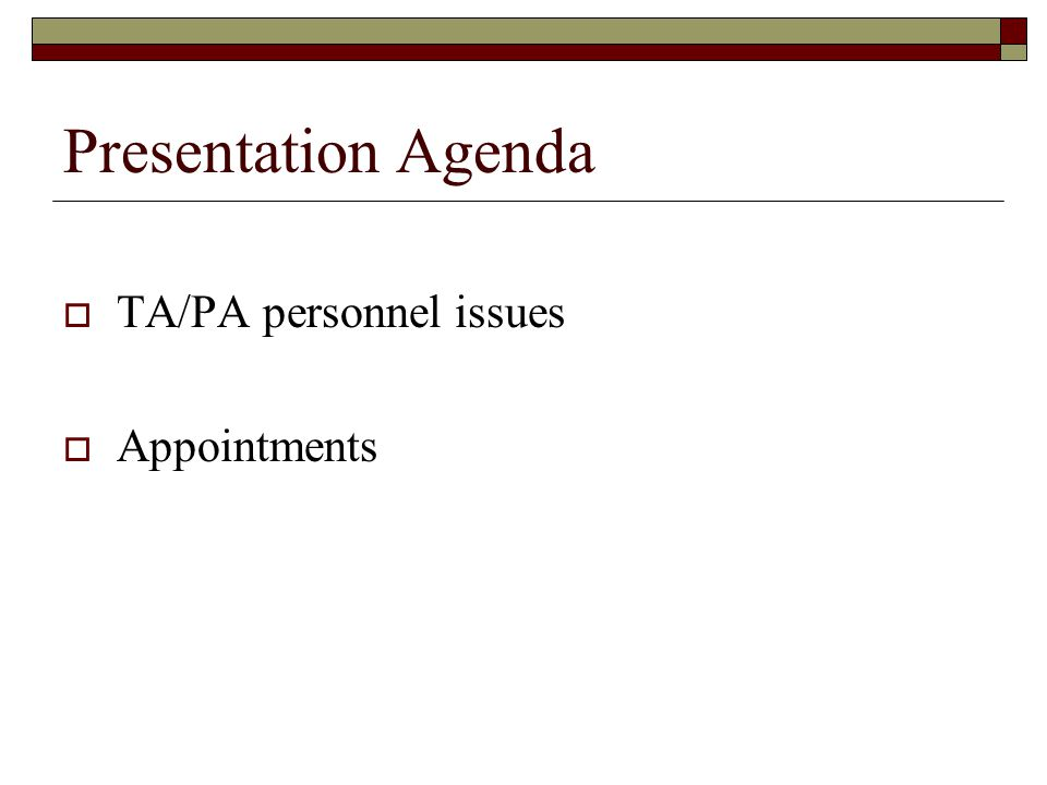 Presentation Agenda TA/PA personnel issues Appointments