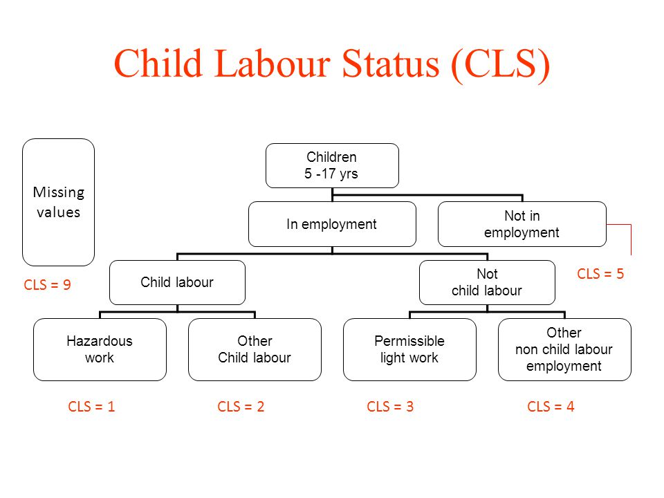 Child Labour Status (CLS)