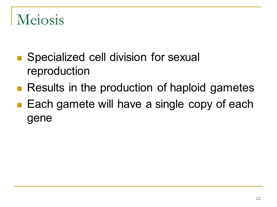 Meiosis Specialized cell division for sexual reproduction