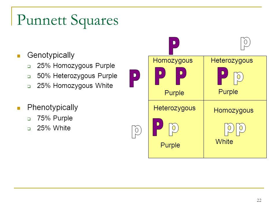 Punnett Squares P p P P P P p P p p p p Genotypically Phenotypically
