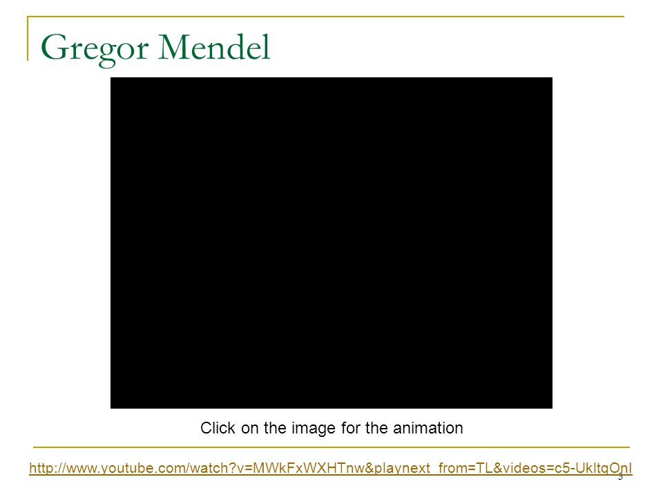 Gregor Mendel Click on the image for the animation