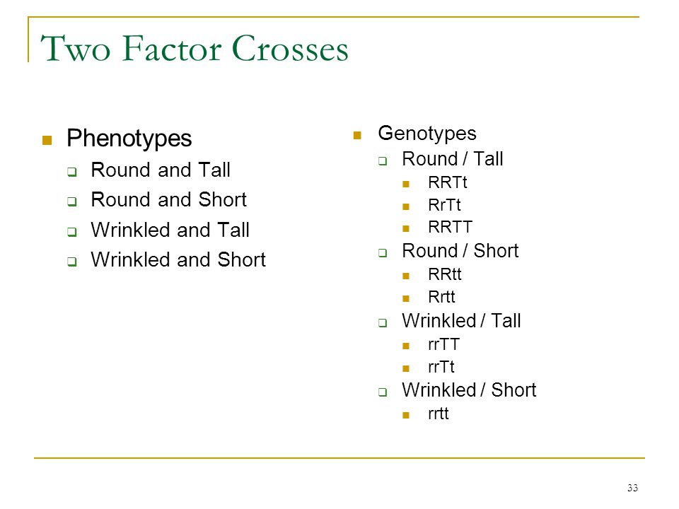Two Factor Crosses Phenotypes Genotypes Round and Tall Round and Short