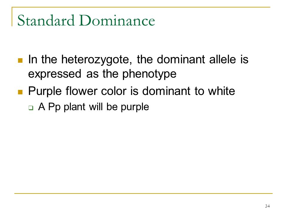 Standard Dominance In the heterozygote, the dominant allele is expressed as the phenotype. Purple flower color is dominant to white.