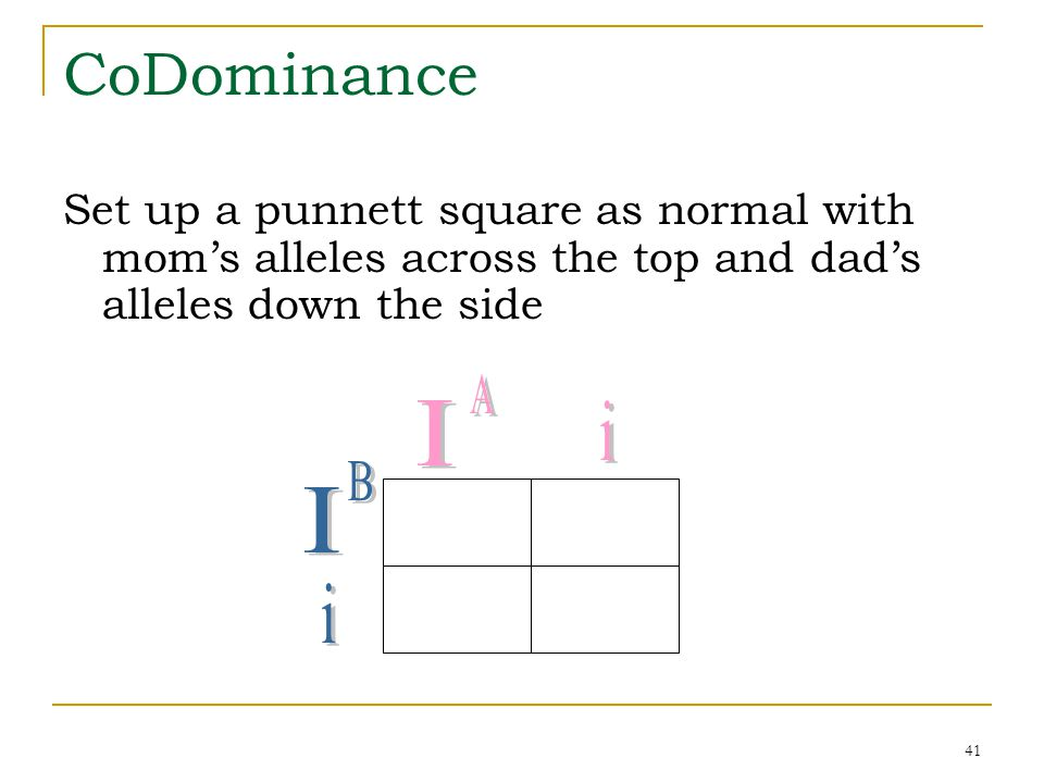 CoDominance Set up a punnett square as normal with mom's alleles across the top and dad's alleles down the side.